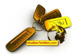 Tại sao bạn nên mua tên miền đẹp tại MuaBanTenMien.com?